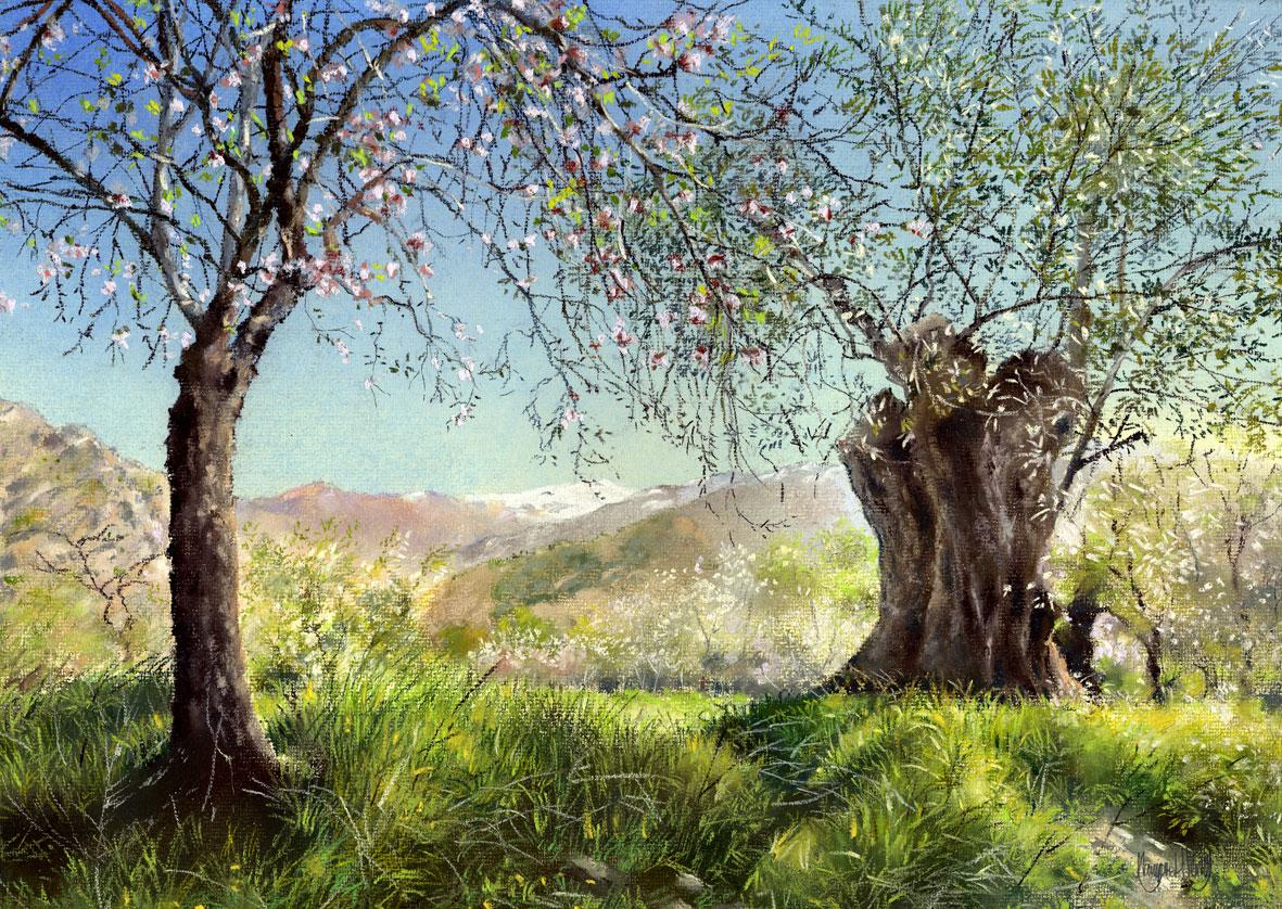 Lecrin Valley Spain The Lecrin Valley – Pastel