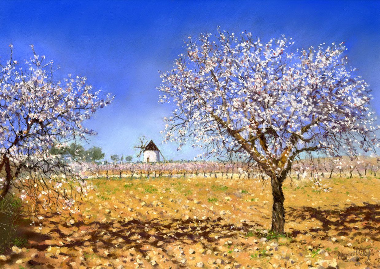 Spring Landscapes Margaret Merry Artist Author